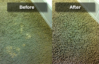 Professional Carpet Dyeing Services In New York