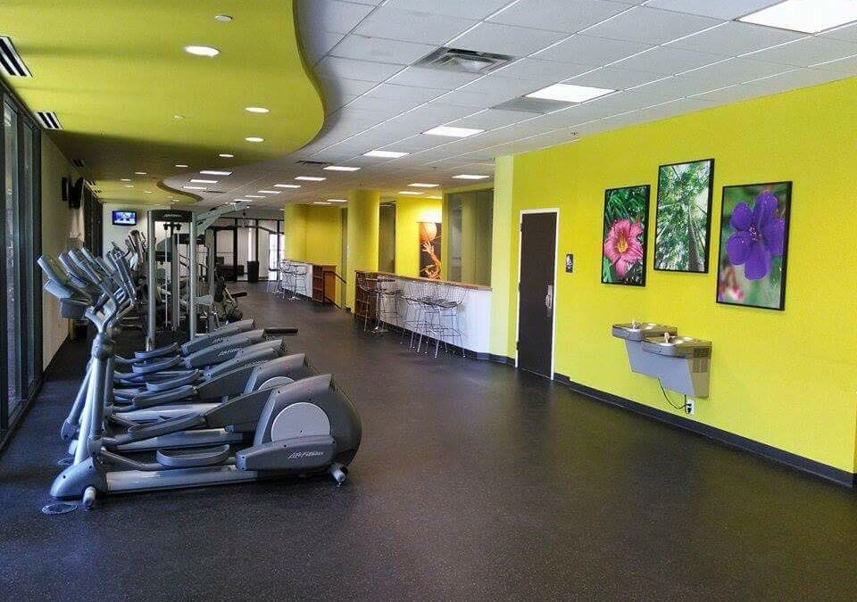 Gym And Fitness Center Cleaning